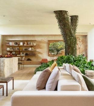 Ideias de construções que incorporam árvores